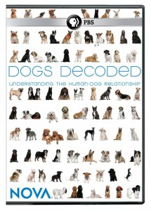 REVIEW DOGS DECODED | JR Martin Media