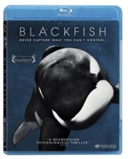Blackfish – Never Capture What You Can't Control